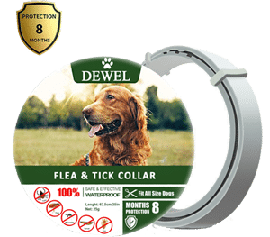 Fedciory Flea and Tick Prevention Collar