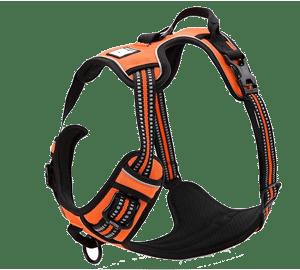 Chais Choice Outdoor Adventure Dog Harness