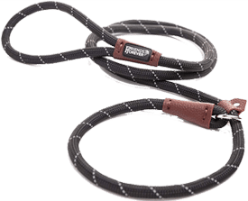 Friends Forever Extremely Durable Leash