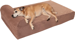 Big Barker 7 Pillow Top Orthopedic Dog Bed
