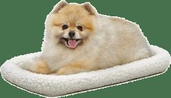 Frisco Quilted Fleece Pet Bed
