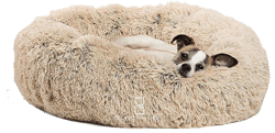 Frisco Steel-Framed Elevated Pet Bed
