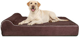 Thick High-Grade Orthopedic Memory Foam Dog Bed